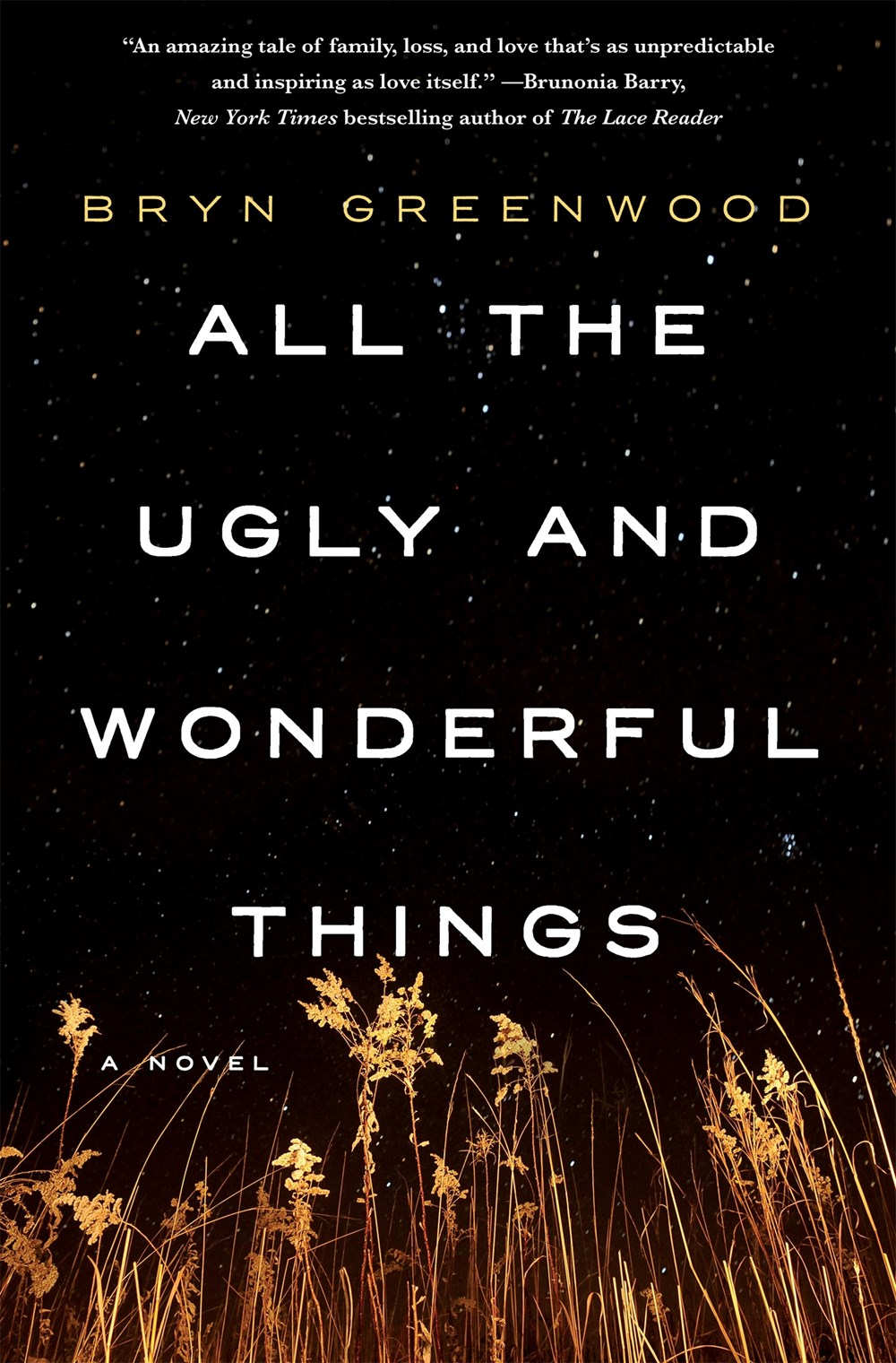 All the Ugly and Wonderful Things by Bryn Greenwood